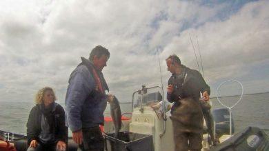 Pêche à la dorade, comment améliorer sa technique